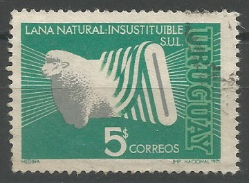 corriedale (Ovis aries)
