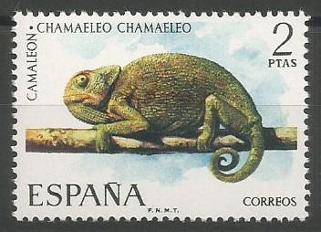 camaleón mediterráneo