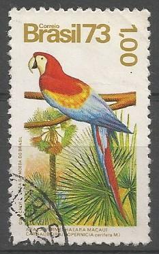 arara vermelha (Ara macau)