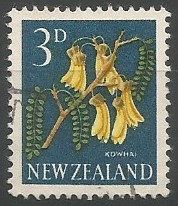 yellow kowhai