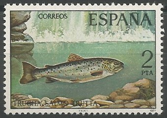 trucha marina