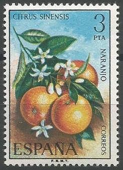 naranjo (Citrus sinensis)