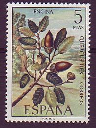 botaniker, 1753