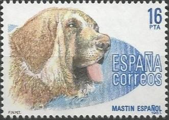 mastín español