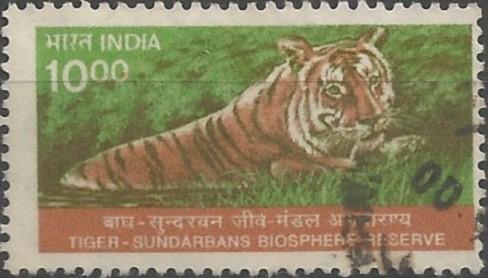 Bengal tiger: Sundarban Biosphere Reserve