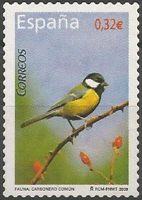 landbirds recorded in China: great tit