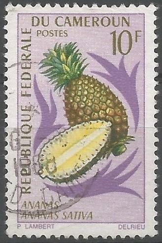 pineapple (Ananas sativa)