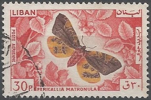 Carl Nilsson Linnæus: auteur du taxon: Pericallia matronula, 1758