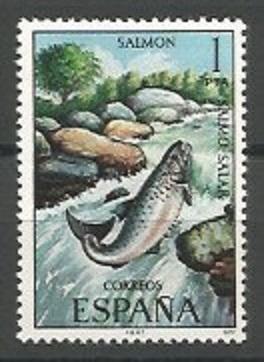 salmón del Atlántico