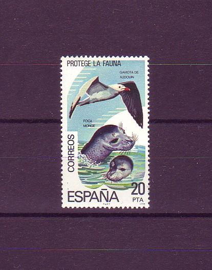 foca monje mediterránea
