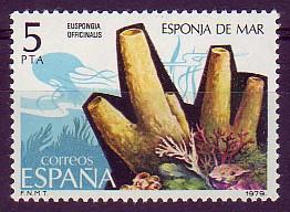 esponja de mar (Euspongia)