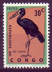 bec-ouvert africain