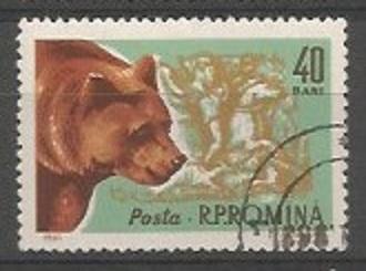 1923-1976